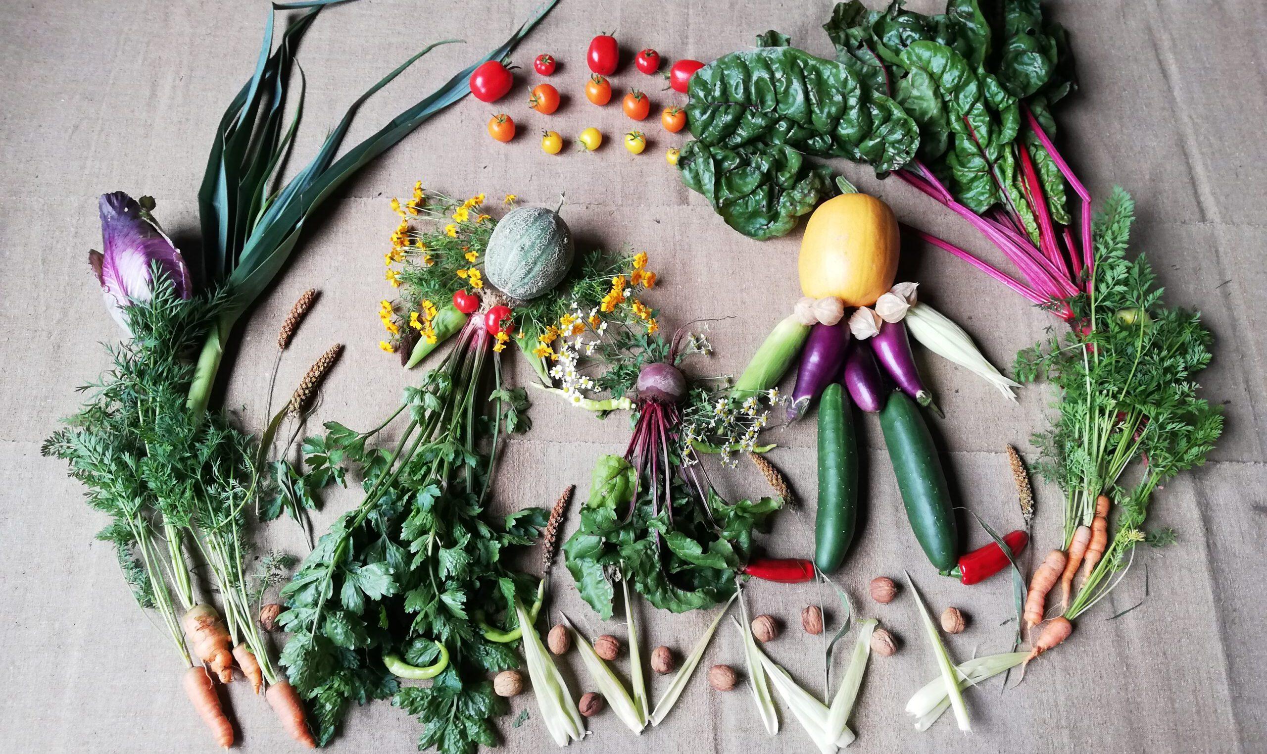 Die bunte Gemüsegemeinschaft aus dem Hunsrück